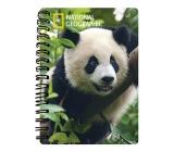 Prime3D Panda