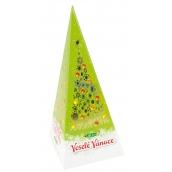 Christmas Black Tea, Apple and Cinnamon Pack 20 x 2 g 17003 1118