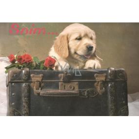 Alvarak Greeting card of love Giga Dog 50 x 30 cm