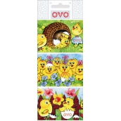 Ovo Egg foil Chickens 1 package = 9 pictures (shrinking shirt)