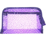 Case Transparent purple 25 x 16 x 6 cm 1 piece P4289