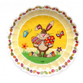 Ditipo Paper plate Easter Bunny 22 cm