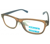 Berkeley Reading glasses +3.0 plastic brown light blue side 1 piece R4077