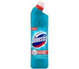 Domestos 24h Atlantic Fresh 750 ml liquid disinfectant and cleaning agent