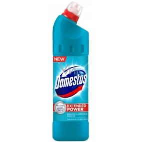 Domestos 24h Atlantic Fresh 750 ml liquid disinfectant and cleaning agent