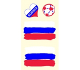 Arch tattoo decals on face and body Russia flag 1 motif