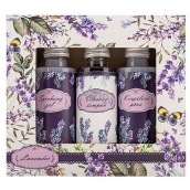 Bohemia Gifts & Cosmetics Lavender shower gel 50 ml + shampoo 50 ml + foam 50 ml, cosmetic set