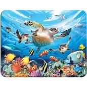 3D magnet - Sea turtles 9 x 7 cm