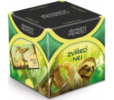 Albi Knowledge Memory - Animal best recommended ages 12+