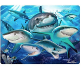 Prime3D postcard - Shark Selfie 16 x 12 cm