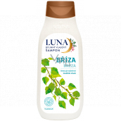 Alpa Luna Birch herbal hair shampoo, reduces excessive hair oiling 430 ml