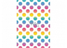 Ditipo Gift wrapping paper 70 x 100 cm White colored circles 2 sheets