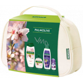 Palmolive Naturals Milk & Almond Shower Cream 500 ml + Milk & Almond Liquid Soap 300 ml + Softly Liss Hair Shampoo 350 ml + Lady Speed Stick Fresh & Essence antiperspirant roll-on 50 ml, cosmetic set