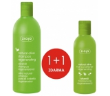 Ziaja Oliva Nourishing Hair Repair Shampoo 400 ml + Oliva Regenerating Conditioner - Dry Hair Nutrition 200 ml, duopack