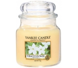 Yankee Candle Tobacco Flowe - Tobacco Flower Candle Classic Classic Glass 411 g
