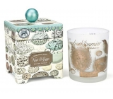 Michel Design Works Bird Paradise Soy handmade scented candle in glass 397 g