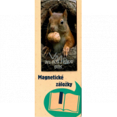 Albi Magnetic bookmark for the book Squirrel with a nut 8.7 x 4.4 cm