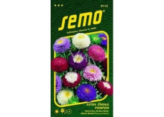 Semo Astra Chinese Pompon mixture 0,5 g