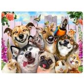 Prime3D postcard - Animal Selfie 16 x 12 cm