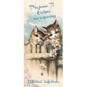 Bohemia Gifts & Cosmetics Přejeme Ti krásné narozeniny kočky Mléčná čokoláda dárková 100 g