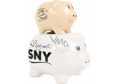 Albi Piggy Bank Its Her Piggy Beige-White 18 x 14 x 10 cm