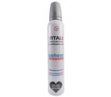 Vitale Exclusively Professional Coloring Mousse With Vitamin E Steel Gray 200 ml