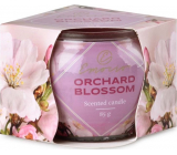 Emocio Decor Orchard Blossom - Fruit flower scented candle glass 70 x 62 mm 85 g
