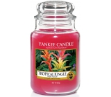 YANKEE CANDLES fragrant glass large Tropical Jungle 3709