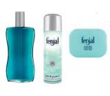 Fenjal Classic bath foam 200 ml + deodorant spray 150 ml + toilet soap 100 g, cosmetic set