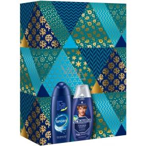 Fa Men Sport 250 ml men's shower gel + Schauma For Men hair care shampoo 250 ml, cosmetic set