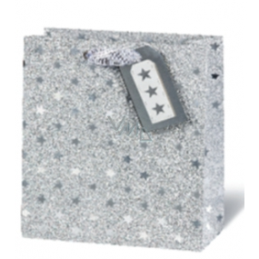 BSB Luxury gift paper bag 23 x 19 x 9 cm Christmas VDT 416 - A5