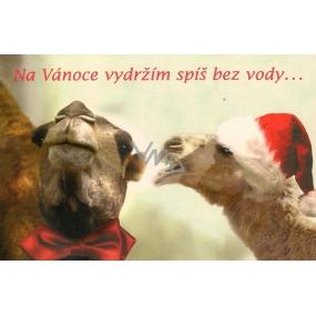 Nekupto Blahopřání Na Vánoce vydržím..,M