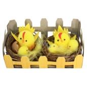 Kuřátka v hnízdě 6 cm v krabičce 2 kusy