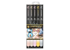 Chameleon Color Tones CT0501 set of toning alcohol markers 5 pieces