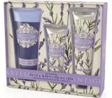 Somerset Toiletry Lavender luxury body cream 130 ml + shower gel 200 ml + luxury hand cream 60 ml, cosmetic set