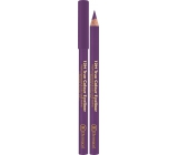 Dermacol 12h True Color Eyeliner wooden eyeliner 03 Purple 2 g