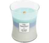WoodWick Trilogy Woven Comforts - Warm comfort scented candle with wooden knot and lid medium glass 275 g