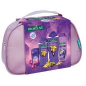 Palmolive Relax shower gel 250 ml + bath foam 500 ml + lady speed stick 45 g + hair shampoo 350 ml, cosmetic set