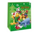 Ditipo Baby Gift Bag L Green Disney Winnie the Pooh Merry Christmas 26.4 x 12 x 32.4 cm