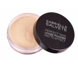 Gabriella Salvete Loose Powder loose matt powder 01 6.5 g