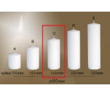 Lima Gastro smooth candle white cylinder 80 x 200 mm 1 piece