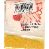 Professional Nail decorations powder yellow HA 1311 2 g