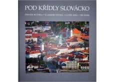 Pod křídly Slovácko Kučera, Těthal, Mikl, Pajer fotokniha