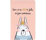 Albi Diary 2020 Pocket Weekly Princess 15.5 x 9.5 x 1.2 cm