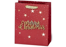 BSB Luxury gift paper bag 23 x 19 x 9 cm Christmas with 3D inscription Merry Christmas VDT 004-A5