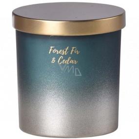 Emocio Forest Fir & Cedar - Fir and cedar scented candle glass with tin lid 80 x 90 mm