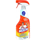 Mr. Muscle Kitchen Citrus Cleaner Sprayer 500 ml
