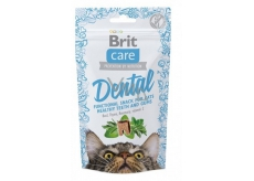 Brit cat cat snack Dental turkey semi-soft supplement for cats 50 g