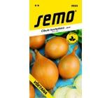 Semo Kitchen onion - spring Všetana 2 g