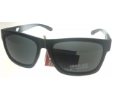 Sunglasses Z208P